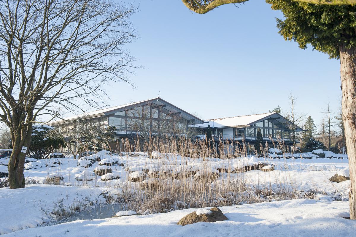 Baumschule Lorenz von Ehren, Hamburg Maltfeld, Januar 2017 bei Schnee